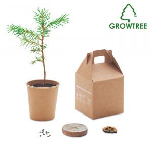 GROWTREE™ - Zestaw sosnowy